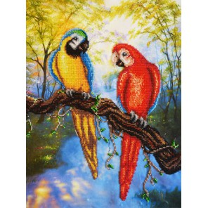 Попугаи Набор для частичной вышивки бисером Паутинка