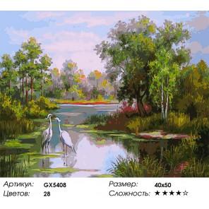 Цапли на пруду  Раскраска картина по номерам акриловыми красками на холсте