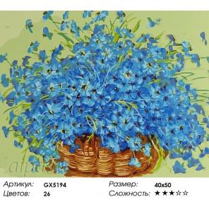 Васильки в корзине Раскраска картина по номерам акриловыми красками на холсте