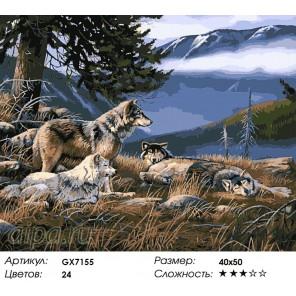 Волки на привале Раскраска картина по номерам акриловыми красками на холсте