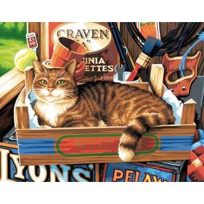 Кошачьи привычки Раскраска картина по номерам акриловыми красками Dimensions