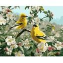 Щеглы весной Раскраска картина по номерам акриловыми красками Plaid