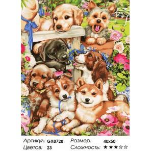 Количество цветов и сложность Озорные щенки Раскраска картина по номерам акриловыми красками на холсте