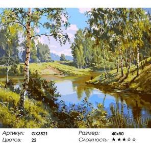 Количество цветов и сложность Летний полдень Раскраска картина по номерам акриловыми красками на холсте