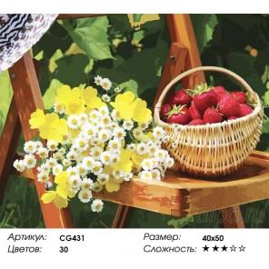 Количество цветов и сложность Дачное настроение Раскраска картина по номерам акриловыми красками на холсте Color Kit