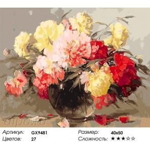 Количество цветов и сложность Шикарные пионы Раскраска картина по номерам акриловыми красками на холсте