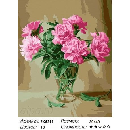 Количество цветов и сложность Садовые пионы Раскраска картина по номерам акриловыми красками на холсте
