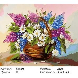 Сирень и ромашки Раскраска картина по номерам на холсте
