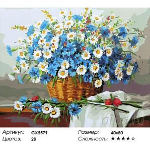 Корзина полевых цветов Раскраска картина по номерам на холсте