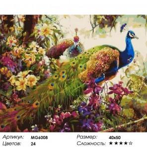 Сложность и количество цветов Павлины цветущем лесу Раскраска картина по номерам акриловыми красками на холсте Menglei MG6008