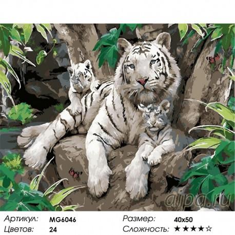 Сложность и количество цветов Белые тигры Раскраска картина по номерам акриловыми красками на холсте Menglei MG6046