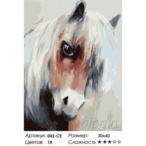 Количество цветов и сложность Лошадка Раскраска картина по номерам акриловыми красками на холсте Белоснежка