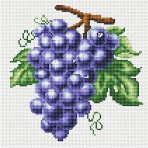 Гроздь винограда Алмазная мозаика стразами на подрамнике Белоснежка