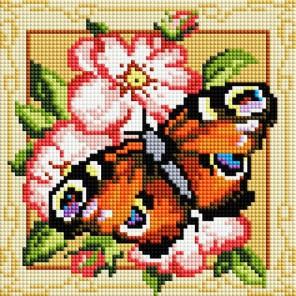 Павлиний глаз Алмазная вышивка мозаика на подрамнике Белоснежка