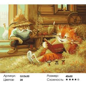 Количество цветов и сложность Кот ученый Раскраска картина по номерам акриловыми красками на холсте