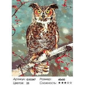 Зимний филин Раскраска картина по номерам на холсте