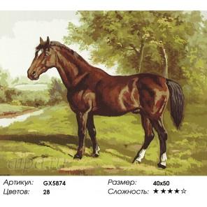 Количество цветов и сложность Гнедой конь Раскраска картина по номерам акриловыми красками на холсте