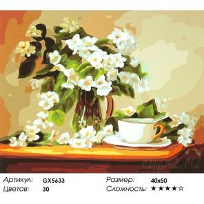 Жасмин в вазе Раскраска картина по номерам на холсте