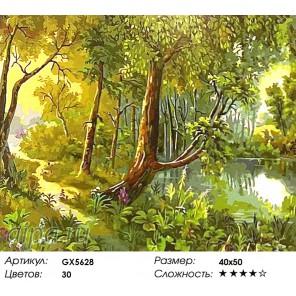 Количество цветов и сложность Лесное озеро Раскраска картина по номерам акриловыми красками на холсте