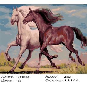 Количество цветов и сложность Сама грация Раскраска картина по номерам акриловыми красками на холсте
