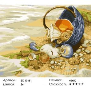 Количество цветов и сложность Морской натюрморт Раскраска картина по номерам акриловыми красками на холсте