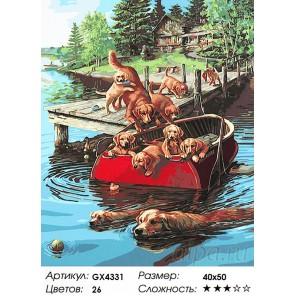 Количество цветов и сложность Плавание по собачьи Раскраска картина по номерам акриловыми красками на холсте
