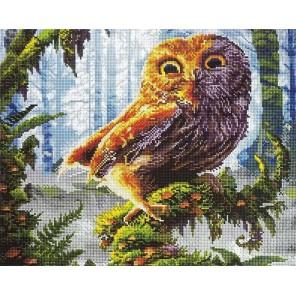 Филин в лесу Алмазная мозаика вышивка Painting Diamond
