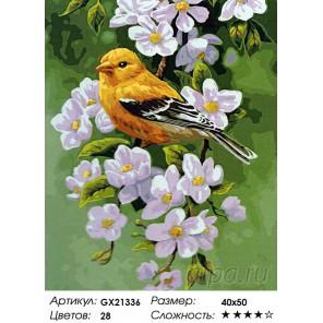 Количество цветов и сложность  Канарейка Раскраска картина по номерам акриловыми красками на холсте