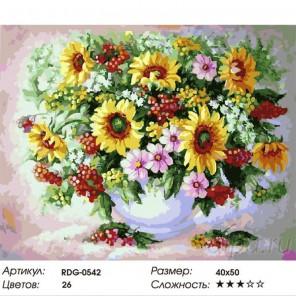 Подсолнухи, полевые цветы и ягода Раскраска картина по номерам акриловыми красками на холсте
