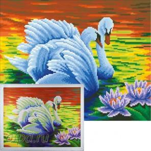 Белые лебеди Алмазная мозаика на подрамнике Цветной