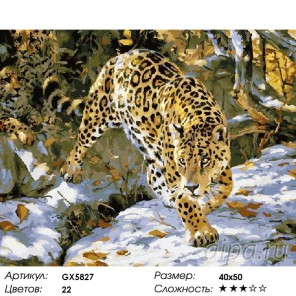 Леопарды Раскраска картина по номерам на холст