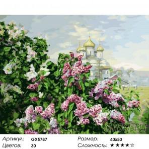 Количество цветов и сложность Сирень и купола Раскраска картина по номерам акриловыми красками на холст