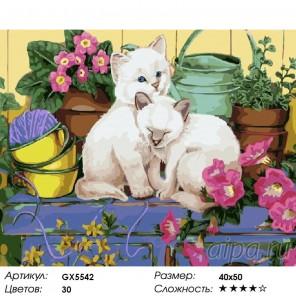 Количество цветов и сложность Сиамские котята Раскраска картина по номерам акриловыми красками на холст