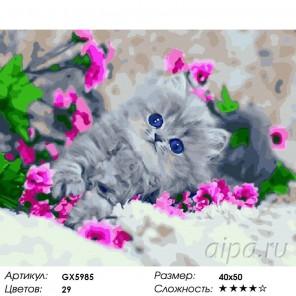 Маленький котенок Раскраска картина по номерам на холст