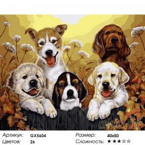 Количество цветов и сложность Щенята Раскраска картина по номерам акриловыми красками на холст