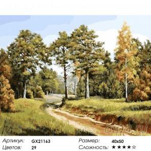 Дорога в лесу Раскраска картина по номерам на холст