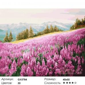 Розовое поле Раскраска картина по номерам на холст
