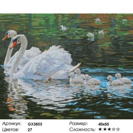 Количество цветов и сложность Лебеди с птенцами Раскраска картина по номерам акриловыми красками на холсте