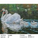 Лебеди с птенцами Раскраска картина по номерам на холсте