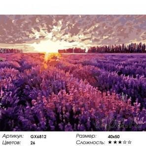 Поле лаванды Раскраска картина по номерам акриловыми красками на холсте