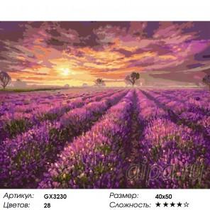 Количество цветов и сложность Лавандовый закат Раскраска картина по номерам акриловыми красками на холсте