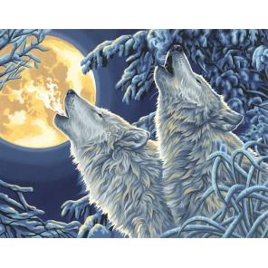 Волки в лунном свете Раскраска картина по номерам акриловыми красками Dimensions