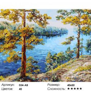 Валаам Раскраска ( картина ) по номерам на холсте Белоснежка