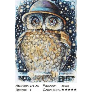 Сова в шляпе Раскраска ( картина ) по номерам акриловыми красками на холсте Белоснежка
