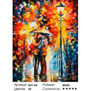 Поцелуй под дождем Раскраска ( картина ) по номерам на холсте Белоснежка