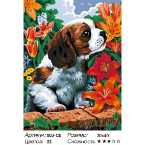 Количество цветов и сложность Щенок и лилии Раскраска ( картина ) по номерам акриловыми красками на холсте Белоснежка