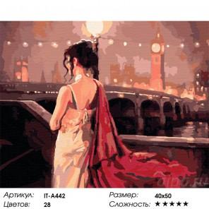 Количество цветов и сложность Вечер в Лондоне Раскраска ( картина ) по номерам акриловыми красками на холсте Iteso