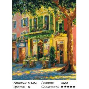 Количество цветов и сложность Французское кафе (художник Haixia Liu) Раскраска по номерам акриловыми красками на холсте Iteso
