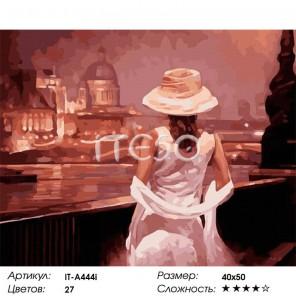 Количество цветов и сложность Вечер в Венеции Раскраска картина по номерам акриловыми красками на холсте Iteso