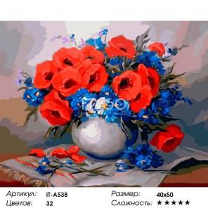Количество цветов и сложность Фелиция с маками Раскраска картина по номерам акриловыми красками на холсте Iteso